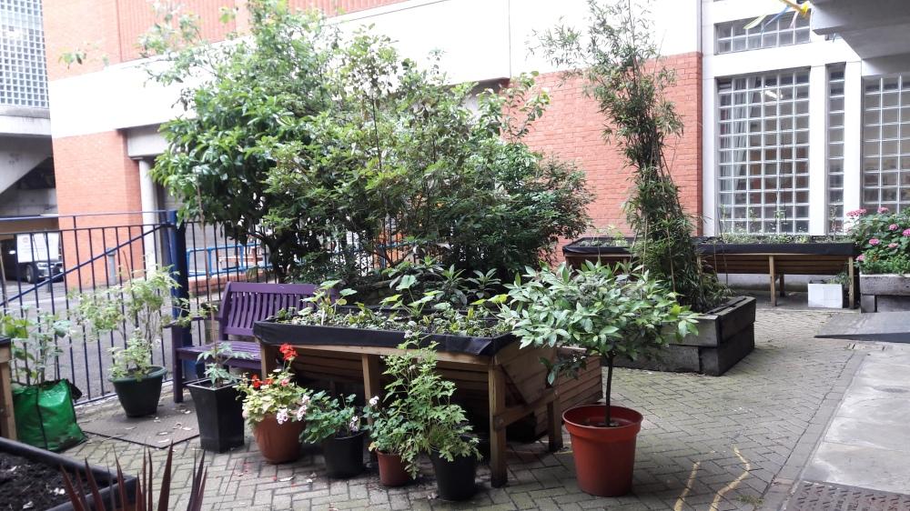 Abbey Centre Garden 1